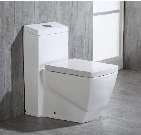 Woodbridge T-0020 Dual Flush Elongated One Piece Toilet
